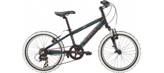 Детский велосипед Smart Kid 20 (2014)